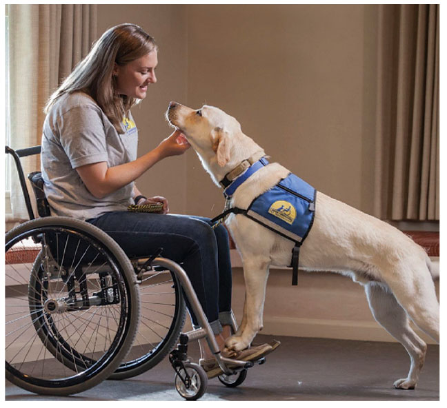 Canine Companions provides service dogs to those in need